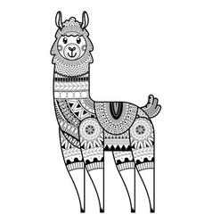 Alpaca design for coloring book vector