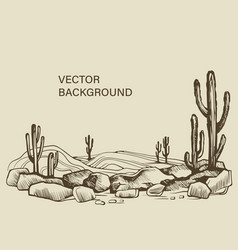 cacti in arizona desert sketch vector image
