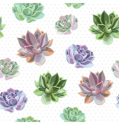 Seamless colorful succulents vector image