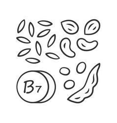Vitamin b7 linear icon almonds and peanuts nuts vector