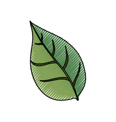 Leaf ecology symbol vector