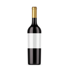 bottle red wine dark alcohol isolated vector image