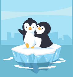 Cute penguins couple with blue ice floe vector