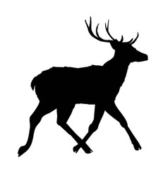 Decoration elegance horned object shadow buck vector