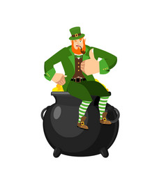 Leprechaun and pot of gold dwarf with red beard vector