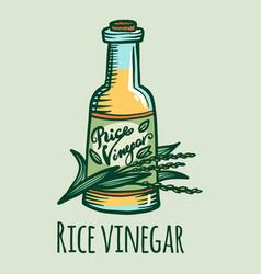 Rice vinegar icon hand drawn style vector