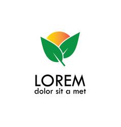 leaf sun logo vector image vector image