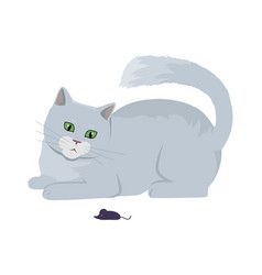 Cat with mouse flat design vector