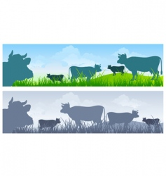 cow in meadow vector image