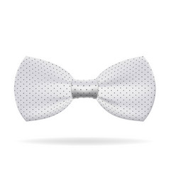 white bow tie wear business gentleman style vector image