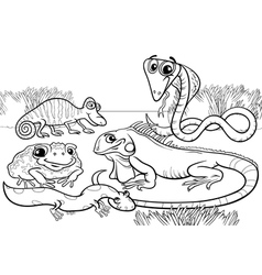 Reptiles and amphibians coloring page vector