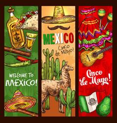 Cinco de mayo mexican holiday fiesta celebration vector