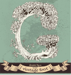 Magic grunge forest hand drawn by vintage font - G vector