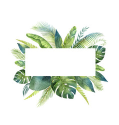 Watercolor banner tropical leaves vector