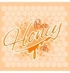 Honey and bee label vector image