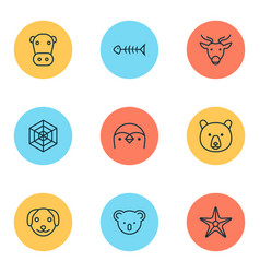 animal icons set with spider web cow sea star vector image