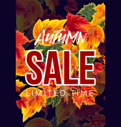 bright design of seasonal sale poster vector image
