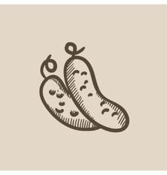 Cucumber sketch icon vector image