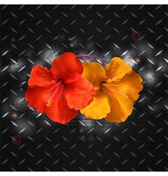 Hibiscus on metallic diamond plate vector