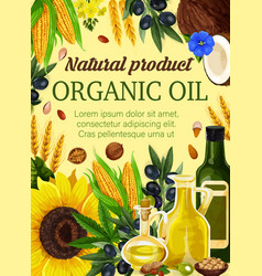 Natural oil from seeds and nuts vector