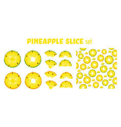 pineapple fruit slices set vector image