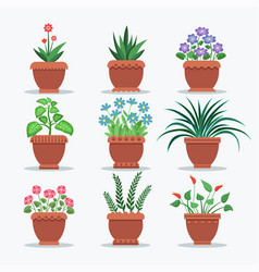 Room plants set flourishing vector