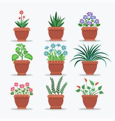 room plants set flourishing vector image