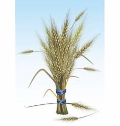 rye vector image