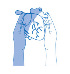 silhouette heart organ to blood circulation in the vector image