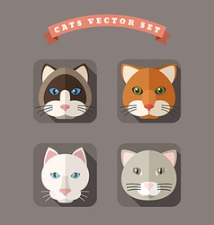Animal Portrait With Flat Design Cats vector