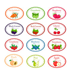 big set of different labels for jam and conservs vector image