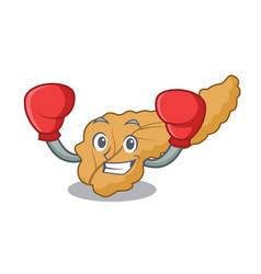 Boxing pancreas character cartoon style vector