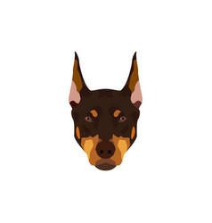 doberman pinscher dog vector image