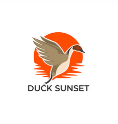 Duck pintail sunset vector