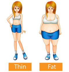 Opposite adjectives words with thin and fat vector