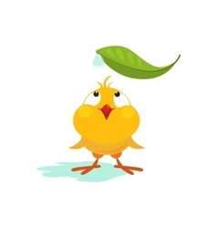 Small Chicken Looking at Leaf vector image vector image