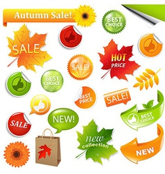 Autumn Collection Sale Elements vector image