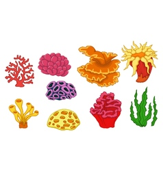 Beautiful coral collection vector