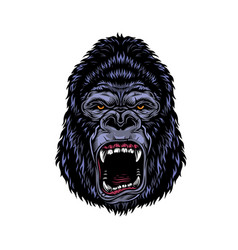 Colorful dangerous angry gorilla head vector