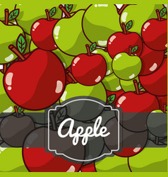 delicious apple fresh fruit label pattern vector image