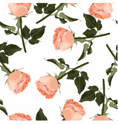 floral garden peach creamy roses seamless pattern vector image