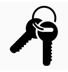 key icon vector image