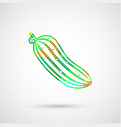 Ripe cucumber isolated vector