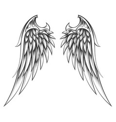 Wings drawn in engraving style tattoo vector