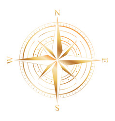 gold compass rose vector image