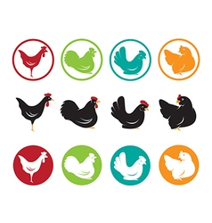 image of an hen design vector image vector image