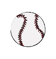 baseball ball sport competition element vector image