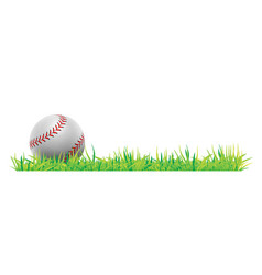 Baseball ball with green grass on white background vector