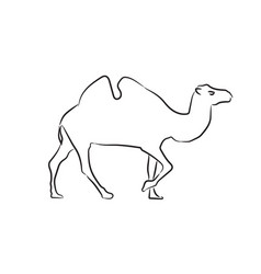 camel sketch style silhouette hand drawn style vector image