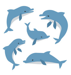 Cute dolphins in different poses vector